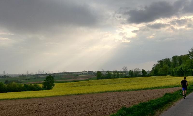 Blick auf die Frankfurter Skyline von Osten